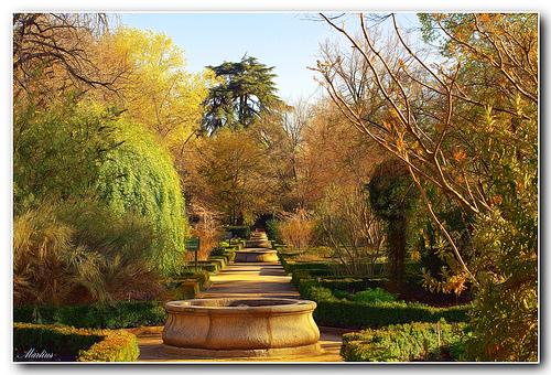 Vivir en madrid visita a los invernaderos del jard n for Jardin botanico madrid conciertos